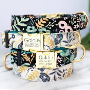 goldie dog collar w engraved buckle