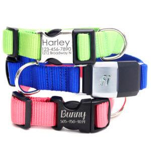 Fi Compatible colorful nylon dog collar
