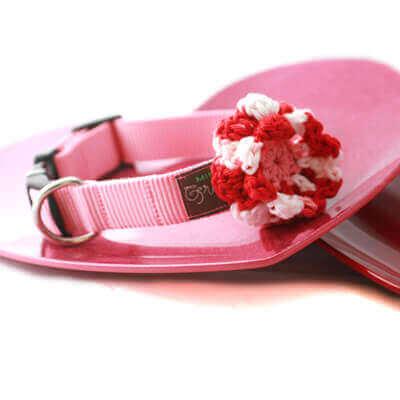 Valentine Flower and Collar